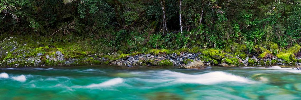 Makarora River - South Island, New Zealand